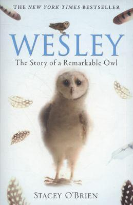 wesley-the-owl-the-remarkable-love-story-of-an-owl-and-his-girl