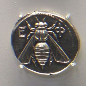bee coin crop