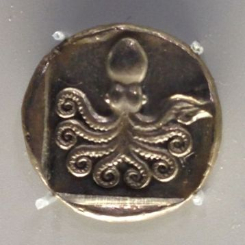 octopus coin crop